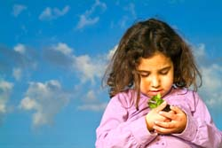 Little Girl Holding Seedling